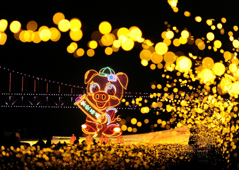 Cochon de lumière, photographié dans l'attente du Nouvel An lunaire à Dalian, Liaoning, le 18 décembre 2018.