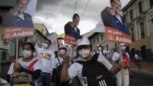 Équateur - Quito - partisans Andres Arauz - AP21098856661203