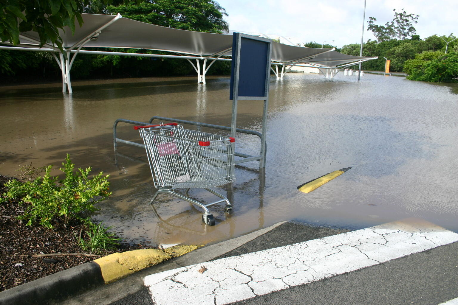 A flooded supermarket in the city of Brisbane