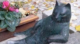 La statue de Tombili, «le dodu» en turc, célèbre chat du quartier de Kadıköy, à Istanbul.