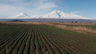 La vallée d'Ararat au printemps.