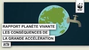 صندوق جهانی طبیعت در آخرین گزارش دوسالانۀ خود که با عنوان «سیارۀ جاندار» منتشر میشود، نسبت به شتاب انقراض گونههای زیستی هشدار می دهد