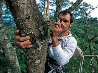 Eric Guilbert, entomologiste