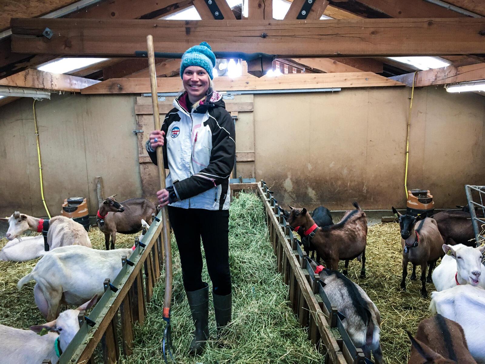 Флави Мелендез-Риголь — хозяйка фермы «Цветущие камни» в Сен-Жерве. По первой профессии она медсестра скорой помощи, она и сейчас половину времени работает в травмпункте, — ферма пока не приносит доход, которого бы хватило и для себя, и на зарплаты сотрудникам.