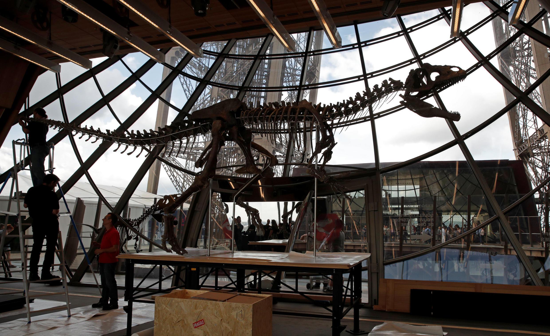 Скелет динозавра на Эйфелевой башне