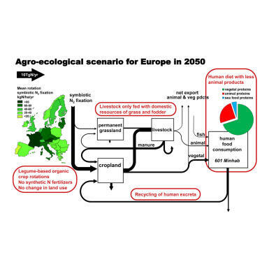 Esquema del modelo agroecológico propuesto para  alimentar a la población de Europa en 2050.