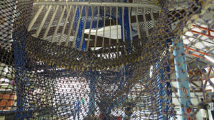 À l'intérieur du filet TED, la grille empêche les tortues d'être prises au piège.
