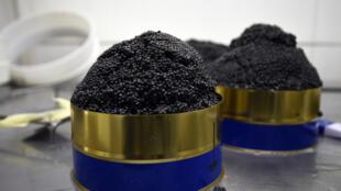 Depuis le début des années 1990, la Russie a perdu sa place de principal exportateur de caviar.
