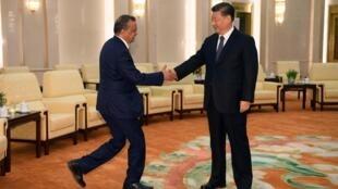 中国国家主席习近平在人民大会堂会见世卫组织总干事谭德塞2020年1月28日