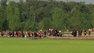 Rohingyas fogem de Mianmar e são impedidos de entrar no Bangladesh (25/08/17).