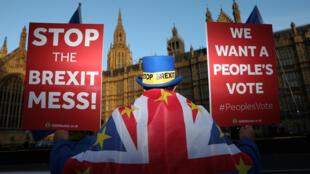 Manifestante anti-Brexit em frente ao Parlamento britânico, em Londres. 13/11/ 2018.