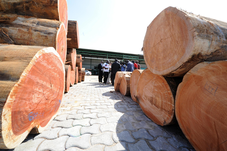 La Société nationale des bois du Gabon à Owendo, le port de Libreville, en octobre 2012. (Photo d'illustration)