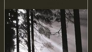 «Temps Glaciaires», roman de Fred Vargas.