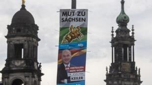 Des affiches de campagne du parti allemand d'extrême droite AfD à Dresde, avant des élections régionales en septembre 2019. (Image d'illustration)