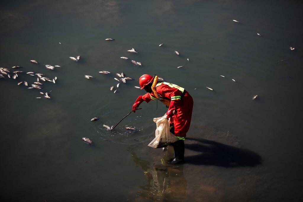 afrique sud usine pollution saccage