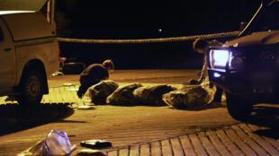 Une partie de la cocaïne saisie par les autorités australiennes, le 26 décembre, sur un total de 1,1 tonne.
