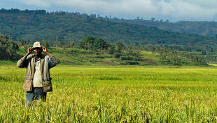 Au Burundi, l'agriculture occupe 90% de la population.