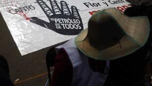 Un manifestante contra la reforma energética frente al Congreso, el 11 de diciembre de 2013 en la Ciudad de México.