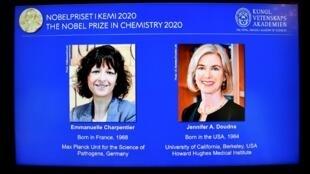 Emmanuelle Charpentier  e Jennifer Doudna Prémio Nobel da química 2020