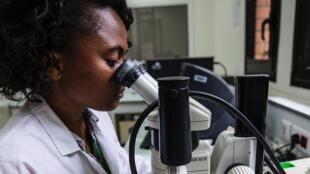 Surveillance de la peste à Madagascar.