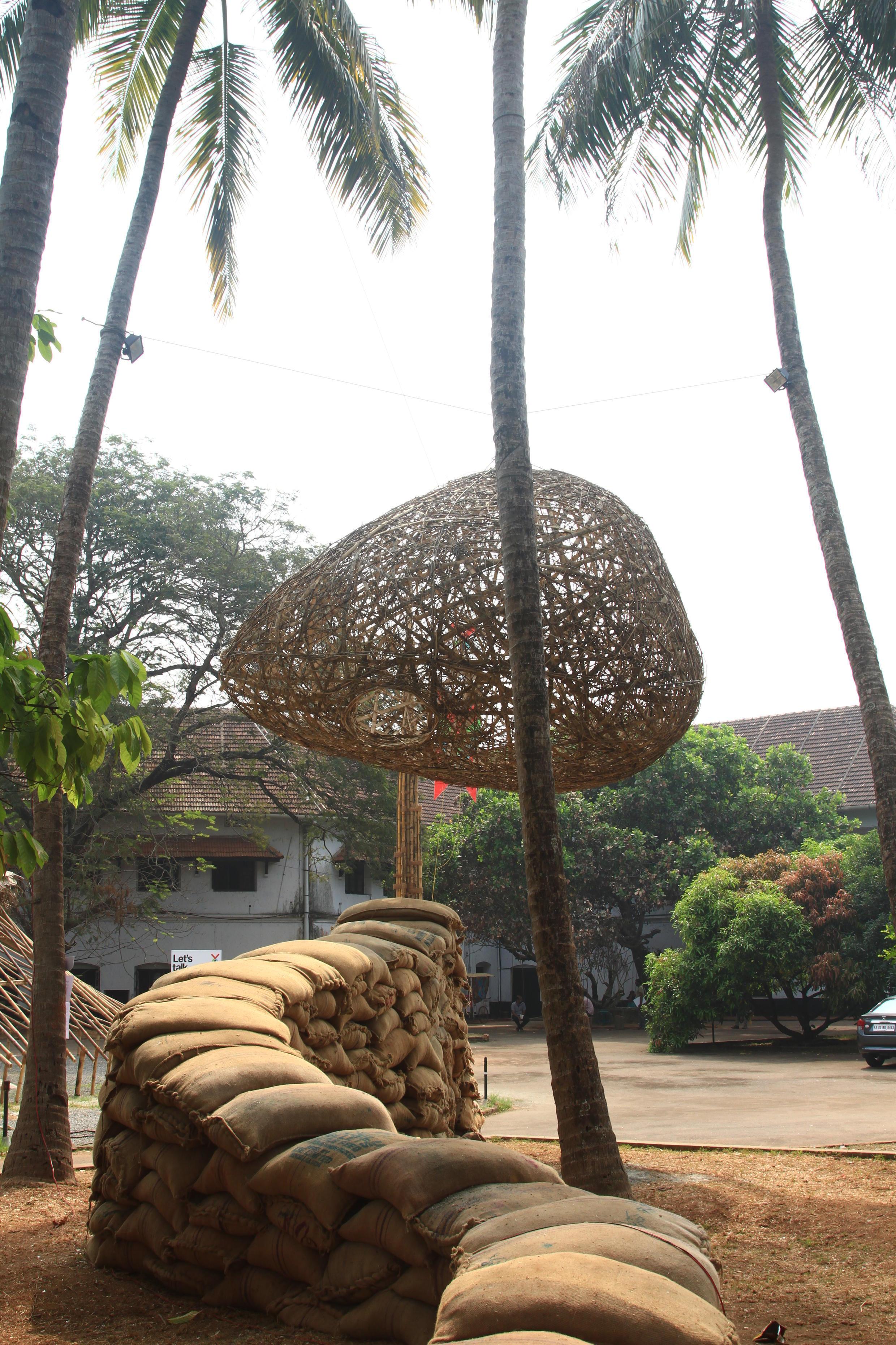 """""""Cocoon"""" est une installation végétale signée Srinivasa Prasad, artiste indien basé à Bangalore."""