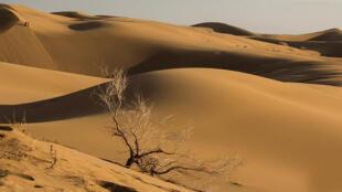 کویر لوت با مساحتی بیش از ۴۰ هزار کیلومتر مربع، در جنوب شرق ایران قراردارد.