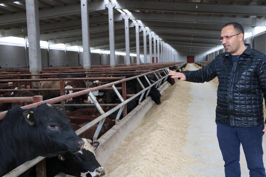 Yılmaz Arpaç, l'un des plus gros éleveurs bovins de Turquie, insiste sur le fait qu'il aime travailler avec les Français. Mais en raison de l'embargo, il doit compenser en faisant venir plus d'animaux vivants d'Australie, d'Uruguay et du Brésil.