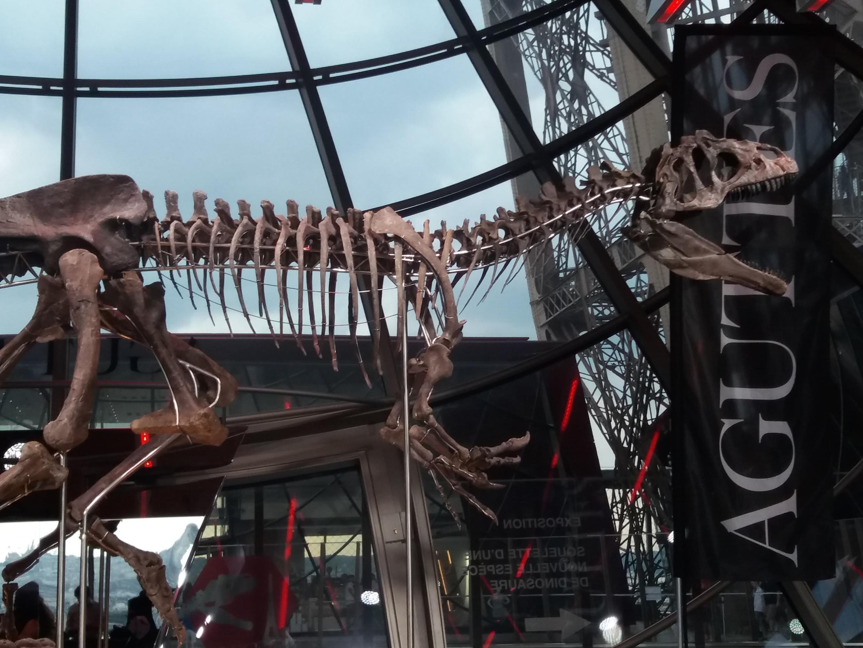 Ce squelette de théropode carnivore a été vendu près d'1,6 million d'euros hors frais aux enchères lundi 4 juin 2018 à Paris.