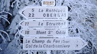 Road signs are covered by frost in Belmont, eastern France on January 6, 2017.