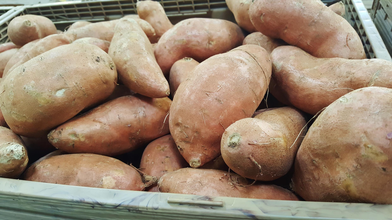 sweet-potatoes-1310287