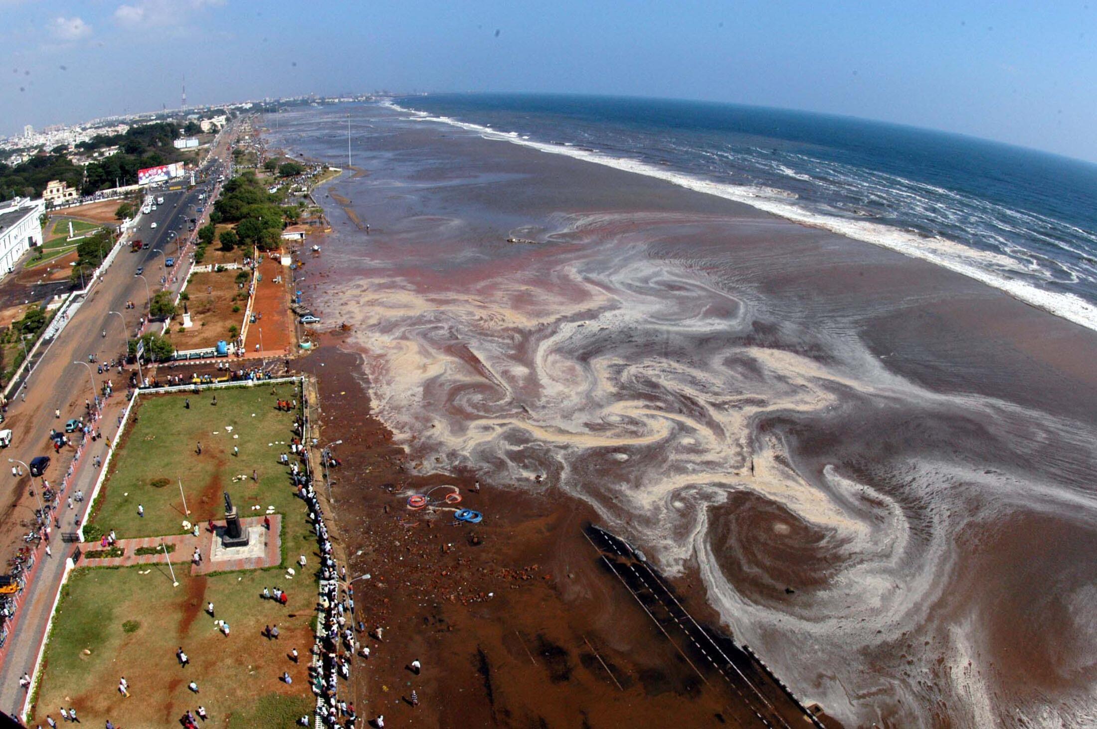 Image aérienne de la marina de Madras, en Inde, le 26 décembre 2014