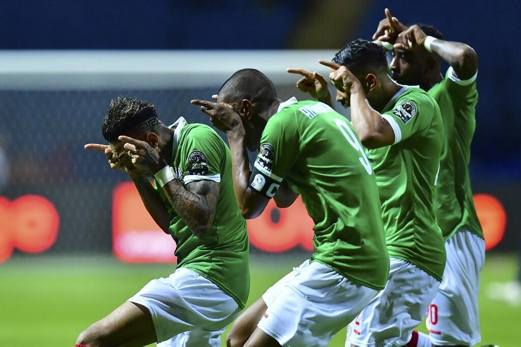 La joie des Malgaches, le 22 juin 2019, après le but d'Abel Anicet face à la Guinée.