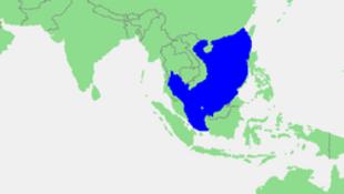 Biển Đông là nơi trung chuyển của gần một nửa khối lượng hàng hóa bằng đường biển của thế giới.