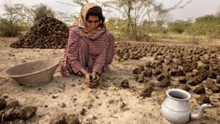 Camponesa paquistanesa do vilarejo Khyber Pakhtunkhwa.