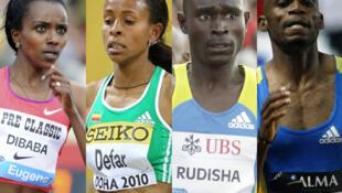 Les vedettes de ces 17es Championnats d'Afrique d'athlétisme : Tirunesh Dibaba, Meseret Defar, David Rudisha et Mbulaeni Mulaudzi (de gauche à droite).