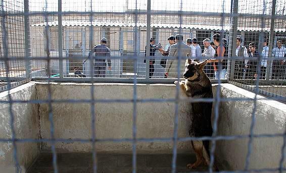 زندان عادل آباد شیراز