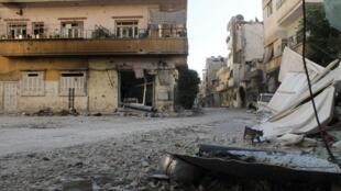Кошка на развалинах домов в городе Хомсе, Сирия, Хомс, 17 июля 2012 года