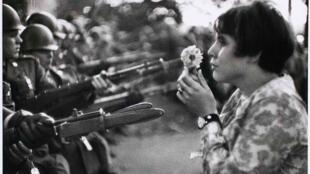 Ảnh 'Cô gái và cành hoa (Fille à la fleur), 1967
