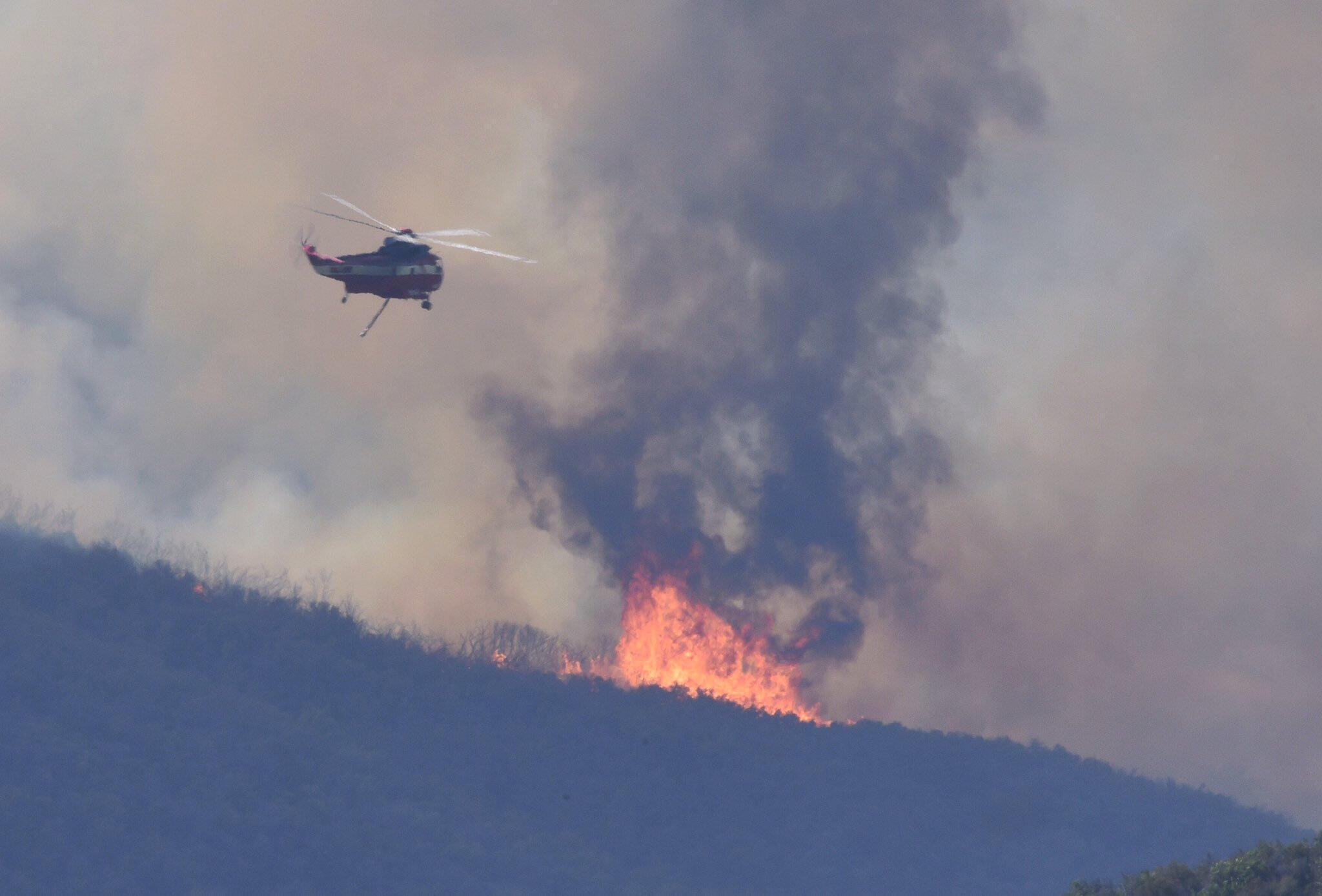 """Na Califórnia, um dos incêndios, batizado de """"Alamo Fire"""", já queimou 11 705 hectares em San Luis Obispo, entre San Francisco e Los Angeles."""