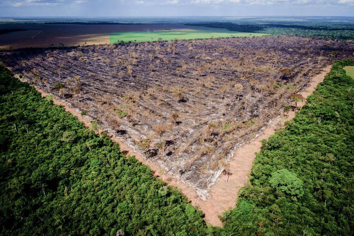 Noruega bloqueo doações ao Fundo Amazônia.