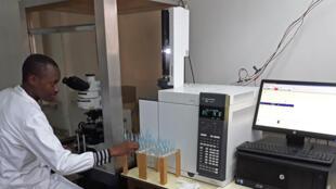 Merid Getahun, le doctorant en train de faire sentir des odeurs à une mouche tsé-tsé sous son microscope.