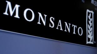 Monsanto, le numéro un mondial des semences, est convoité.