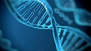 maladies rares - ADN - génétique