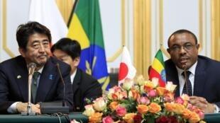 Le Premier ministre japonnais Shinzo Abe et son homologue éthiopien Hailemariam Desalegn, à Addis Abeba, le 13 janvier 2014.