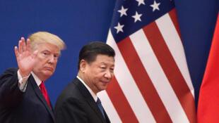 Les présidents américain et chinois après un rendez-vous avec des hommes d'affaires, le 9 novembre 2017.
