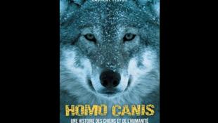 Couverture du livre de Laurent Testot, «Homo Canis, une histoire des chiens et de l'humanité», paru aux éditions Payot.