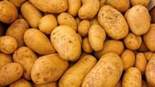 La filiale indienne de PepsiCo a déposé plainte au début du mois contre quatre producteurs de pomme de terre du Gujarat, dans le nord du pays.