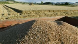 Une exploitation agricole en France (image d'illustration).