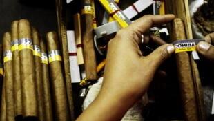 Cubatabaco commercialise dans le reste du monde la prestigieuse marque Cohiba, créée en 1966.