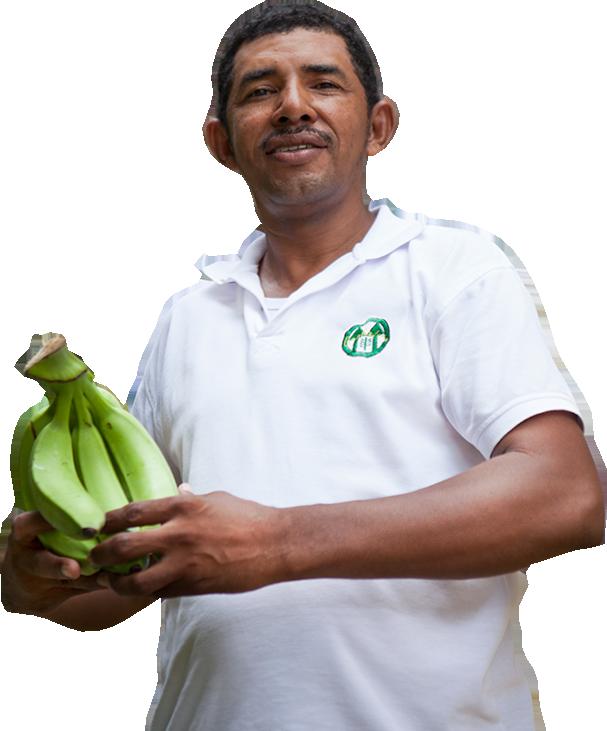 El colombiano Alfonso Cantillo, pequeño productor bananero.